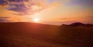 Het groene landschap van het grasgebied onder de zonsonderganghemel van de zondaling met zachte wolken in de zomer Stock Foto's