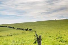 Het groene Landschap van Sussex Royalty-vrije Stock Foto's