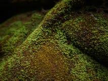 Het groene mos behandelde de stenen Royalty-vrije Stock Afbeelding