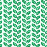 Het groene Naadloze Patroon van Bladeren Royalty-vrije Stock Foto's