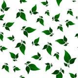 Het groene Naadloze Patroon van Bladeren Royalty-vrije Stock Afbeelding
