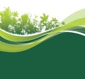 Het groene natuurlijke bos plaatsen Royalty-vrije Stock Afbeelding