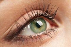 Het groene oog van de vrouw `s royalty-vrije stock fotografie