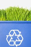 Het groene Recycling van het Gras Stock Foto
