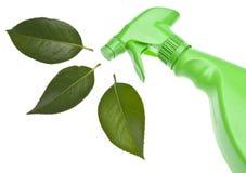 Het groene Schoonmaken Stock Foto