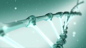 Het groene spiraalvormige roteren van DNA stock footage