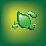 Het groene verlof van Waterdrop Royalty-vrije Stock Afbeelding