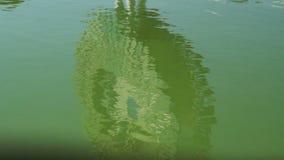Het groene Water Golven stock footage