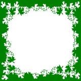Het groene wit verlaat frame achtergrond Stock Foto