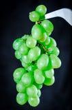 Het groene zaadloze de Druiven van de Boslijst hangen Stock Foto's