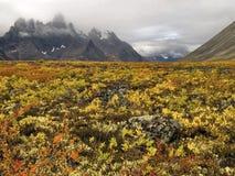 Het Grondgebied van Yukon van de Pas van de grafsteen Royalty-vrije Stock Foto