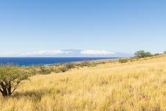 Het grote Eiland Hawaï en Maui Stock Foto
