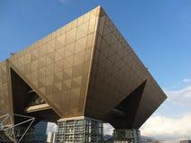 Het Grote Gezicht van Tokyo Stock Afbeeldingen