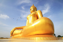 Het grote gouden standbeeld van Boedha van Wat Moung in Angthong-provincie, royalty-vrije stock foto