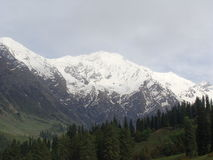 Het grote Himalayagebergte Stock Fotografie