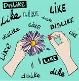 Het grote lilac madeliefje in vrouwelijke handen, vingers scheurt bloemblaadjes van FL vector illustratie