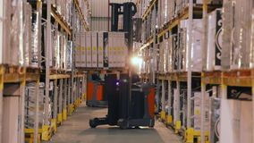 Het grote moderne pakhuis, vorkheftruck vervoerden de doos Werkschema in een pakhuis met dozen stock footage