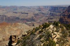 Het grote Nationale Park van de Canion, de V.S. Stock Foto's