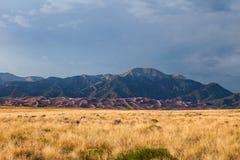 Het grote Nationale Park van Zandduinen in Colorado Royalty-vrije Stock Afbeelding