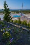 Het grote Prismatische Nationale Park van Yellowstone Stock Afbeelding