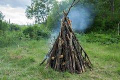 Het grote vuur van droog verlamt brandwonden in het bos, tegen de achtergrond van bomen Stock Foto