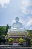 Het grote witte standbeeld van Boedha Stock Fotografie