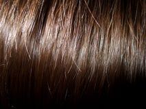Het haar van Childs. Sluit omhoog. Royalty-vrije Stock Foto