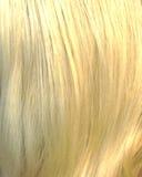 Het haar van de blonde Stock Foto's