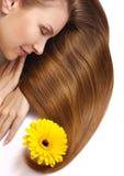 Het haar van de mooie vrouw Royalty-vrije Stock Foto's
