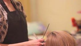 Het haar van de vrouw van kappersbesnoeiingen stock footage