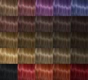 Het haar van het kleurenpalet Stock Foto