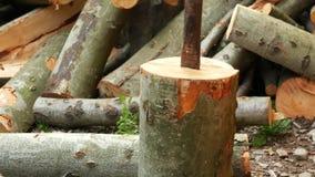 Het hakkende hout van de mens Het proberen om de straal met een bijl te verdelen Hakkend brandhout met een wig stock video