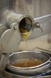 Het halen van honing uit de honingraat Stock Afbeelding