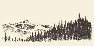 Het hand getrokken bos van de landschapsspar en weideschets Stock Foto