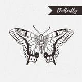 Het hand getrokken ontwerp van het vlinderembleem Vectorelement op de grungeachtergrond Stock Foto's