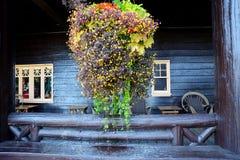 Het hangen het mandhoogtepunt van bloemen hangt vóór een oud houten hotel stock foto