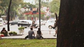 Het hangen op de boom van proteïne en het dagelijkse leven van de Vietnamese stad op de achtergrond stock video