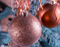Het hangen op een tak onder de bal van klatergoudkerstmis Royalty-vrije Stock Fotografie