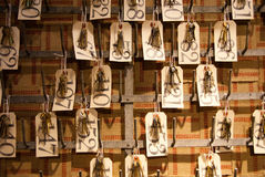 Het Hangen van sleutels Stock Fotografie