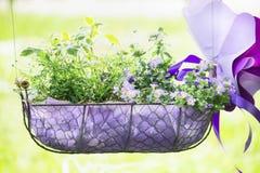 Het hangende park van het bloembed op een zonnige natuurlijke achtergrond royalty-vrije stock afbeeldingen