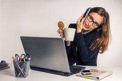 Het harde werk in bureau Stock Fotografie