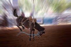Het hardnekkig verzetten tegen van Paard zich bij Rodeo stock fotografie