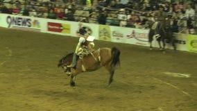 Het hardnekkig verzetten tegen vanzich Wild paard Rider Succeeds stock videobeelden