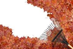 Het harken van bladeren Royalty-vrije Stock Afbeelding