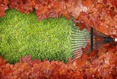 Het harken van bladeren Stock Afbeelding