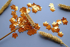 Het harken van gouden bladeren en tarwe Royalty-vrije Stock Foto's