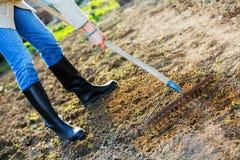 Het harken van land in de tuin bij de lente royalty-vrije stock afbeelding