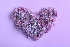 Het hart dat van tot bloei komende sering wordt gemaakt, legt vlak enkel Geregend stock afbeeldingen