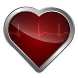 Het hart en het cardiogram Stock Fotografie
