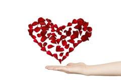 Het hart van bloemblaadjes Royalty-vrije Stock Foto
